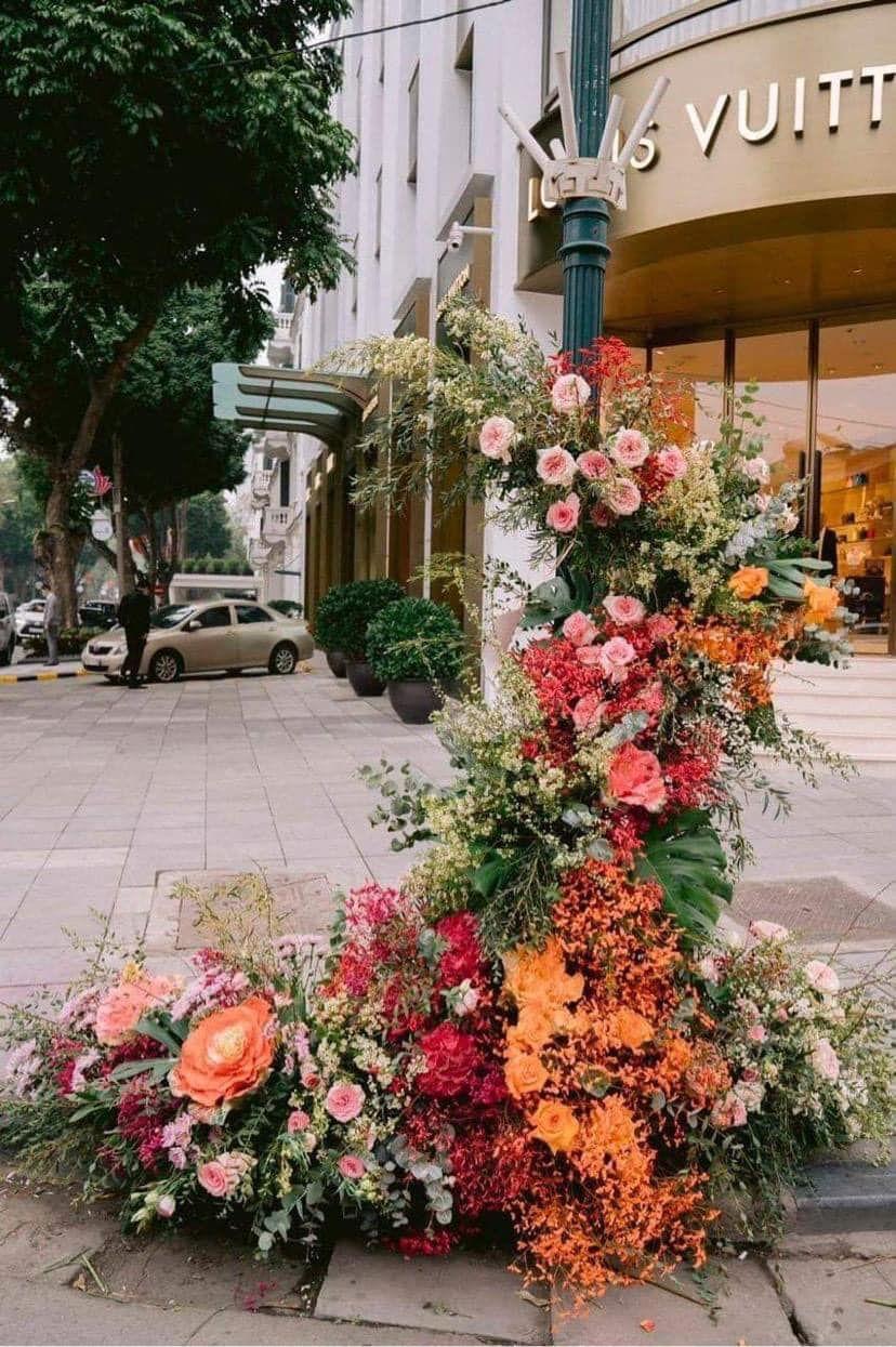 hoa ngay phu nu